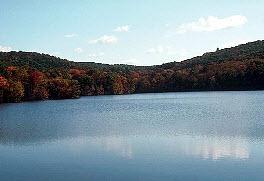 Lake Lanier Lake View real estate for sale
